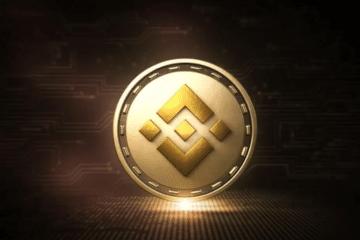 Cours Binance Coin Crypto Monnaie en Temps Réel (BNB)