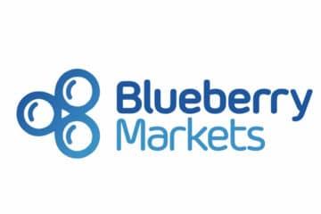 Blueberry Markets Avis