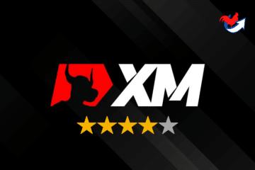 XM Avis 2021